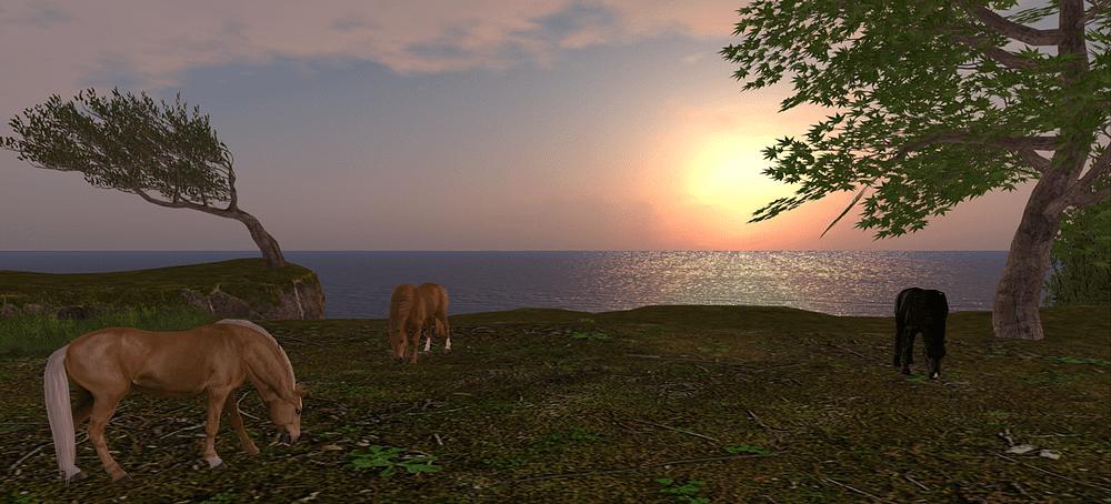Decor Animesh horse Waterhorses