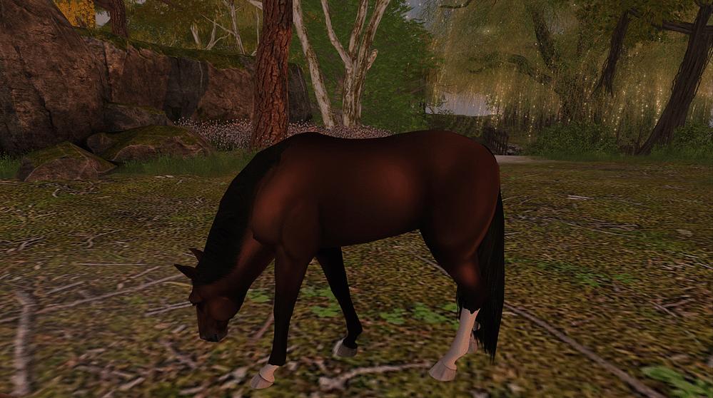 Teegle Animesh Horse