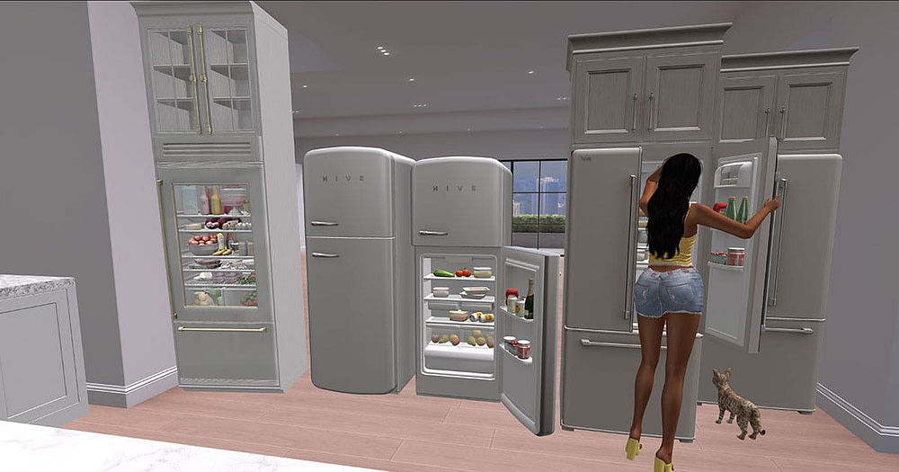 Second Life Kitchen fridge